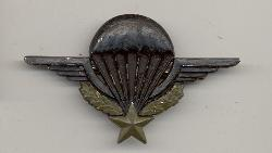 click to see fyi0002-post-wwii-french-paratrooper-badge-subdued