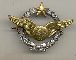 click to see fyi0005-post-wwii-french-air-force-navigators-badge