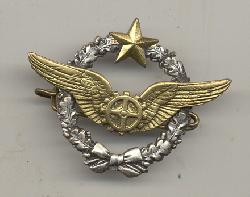 click to see FYI-0004, Post WWII French Air Force flight mechanics badge